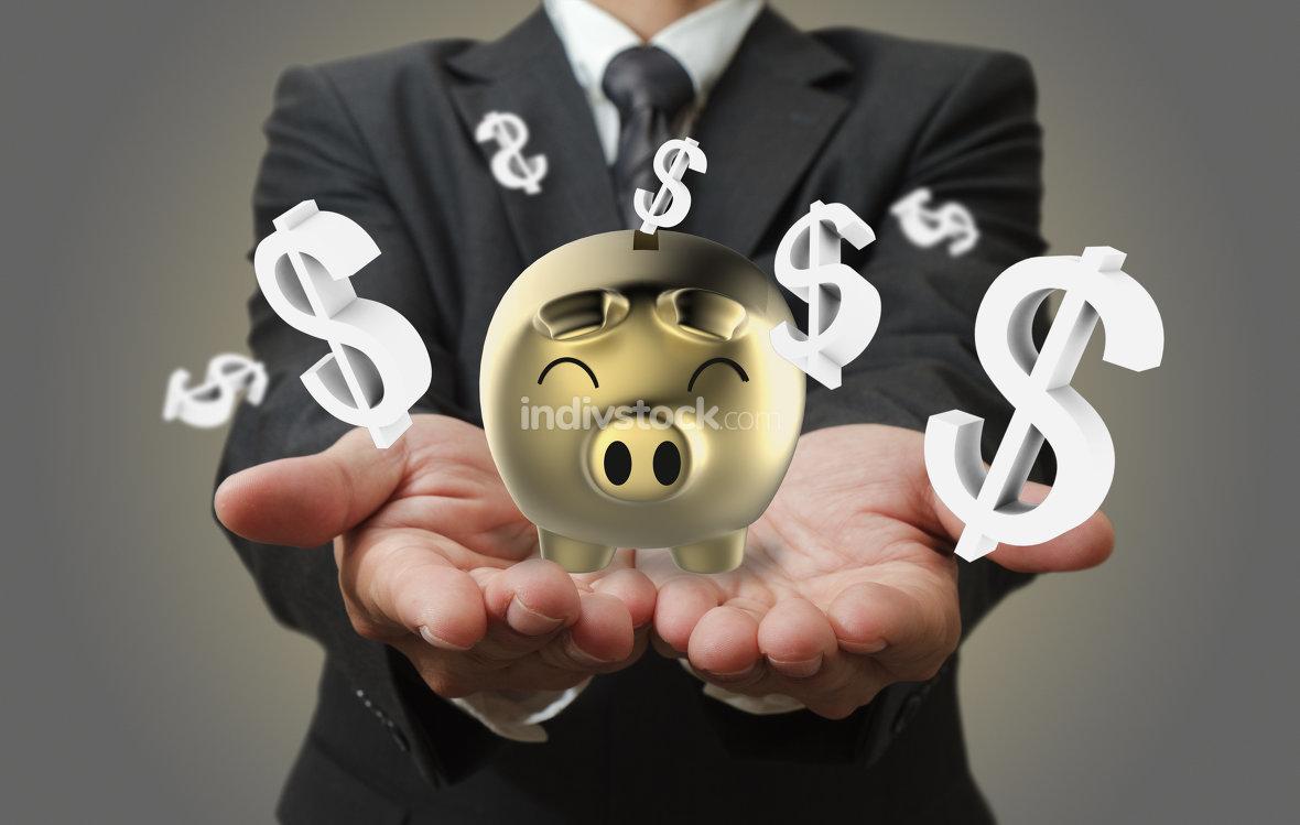 Dollar Sparschwein Finanzen